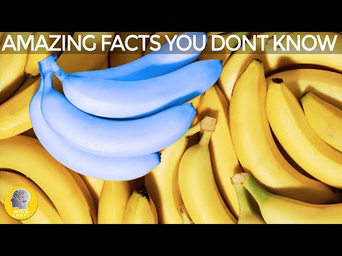 MIND BLOWING FACTS YOU NEVER KNEW!!