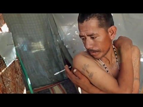 CÓMO SE PRODUCE LA HEROÍNA EN MÉXICO Y SE INTRODUCE EN EE.UU.