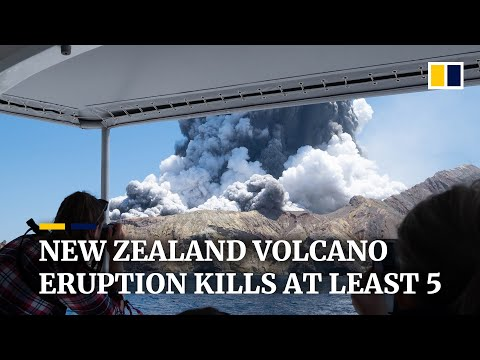 At least five dead after New Zealand's White Island volcano erupts