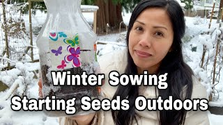 Easy & Cheap Way To Start Seeds - Winter Sowing