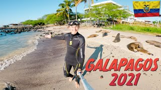 How to travel to Galapagos in 2021