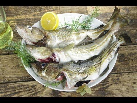 Послевкусие. Снижение цены рыбной продукции в Мурманске на 30% - невыполнимая задача?