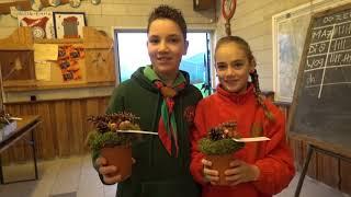 Scouting Laurentius verkoopt kerststukjes