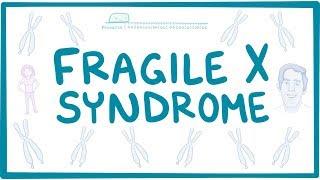 Fragile X Syndrome - causes, symptoms, diagnosis, treatment, pathology