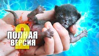 Спасение новорожденного котенка. Продолжение / SANI vlog