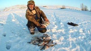 Рыбалка в энергетике ирикла