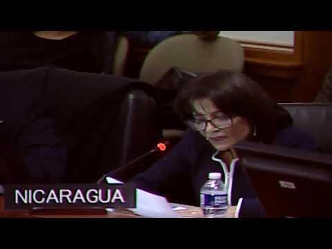 Nicaragua en la OEA condena intervención en asuntos internos de la Mancomunidad de Dominica