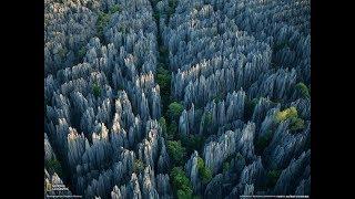 Это стоит увидеть! Каменный лес Цинги!