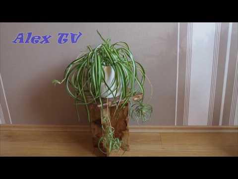 Blumenständer / Pflanzenbank aus Pappe selber basteln .