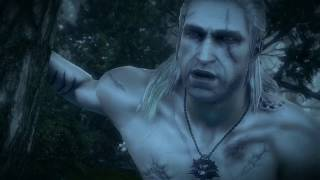 All witcher 2 sex scenes