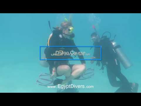 Egypt Divers Best Excursions in Hurghada