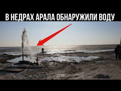 Пресную воду нашли на высохшей части Аральского моря