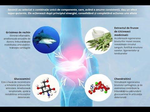 Artroza tratamentului brusturelor genunchiului