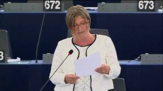 Felszólalás a legális migrációról szóló vitában – Strasbourg, 2016.06.07.