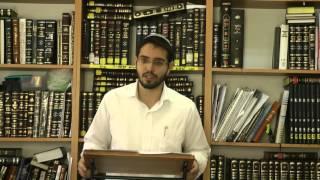 תחיית המתים ר' דוד ויצמן