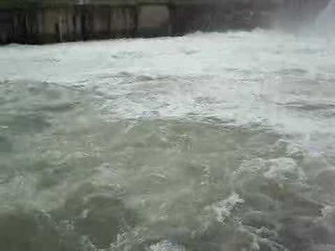 Bhadra river dam 1