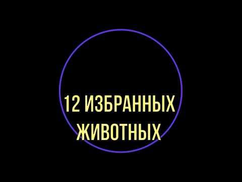 Гороскоп любовный на сегодня овнам женщинам по гороскопу
