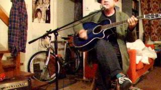 The Beatles - Hallelujah I Love Her So - Acoustic Cover - Danny McEvoy