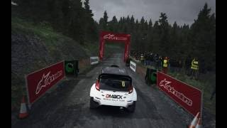Dirt Rally Tutorial - Simplifying Weight Transfer