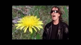 Video KUNT Lumír  -  V tvých rukou