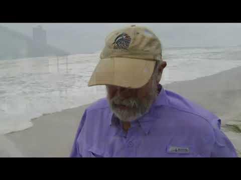 Florida's panhandle braces for Hurricane Michael