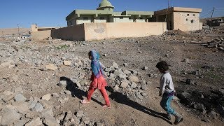 UN: One in four Iraqi children live in poverty after war against ISIL