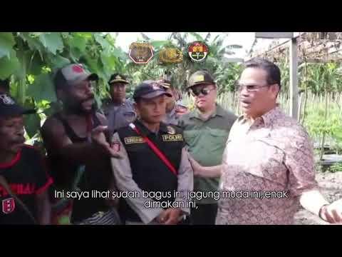 Testimoni Masyarakat Papua Pertanian Mimika