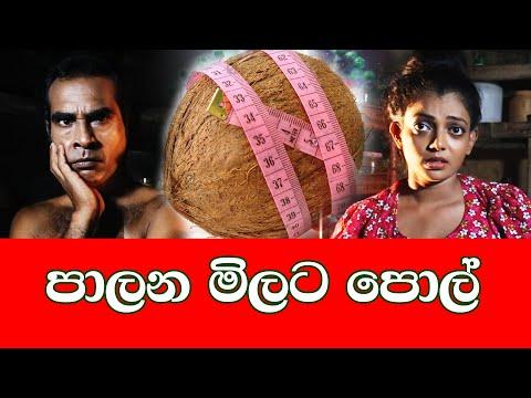 Download Palana Milata Pol - පාලන මිලට පොල් | Samare Ayya - සමරේ අයියා HD Mp4 3GP Video and MP3