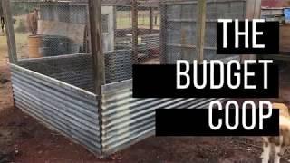 Building A Budget Chicken Coop