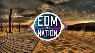 David Guetta, Martin Garrix & Brooks - Like I do (Blanee × Malvenik Remix)