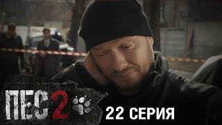 Сериал Пес - 2 сезон - 22 серия - ПРЕМЬЕРА