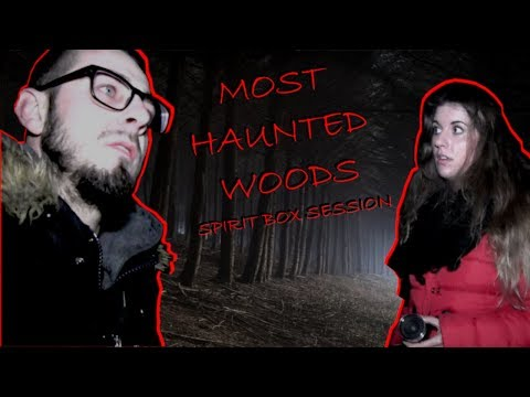 Pembrey Woods: UK's Most Haunted Forest Paranormal Investigation