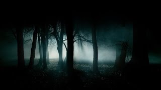 FOREST AT NIGHT 🎧 Crickets Owls Rain & Wind – Stress Relief, Healing Relaxation, Deep Sleep, Study