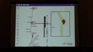 Seasonal distribution and habitat associations of Shortnose Sturgeon in the Hudson River estuary.