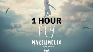 Gambar cover 1 Hour Marshmello - Fly (feat. Leah Culver) (Official Music Video)