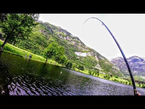 La pesca su quello che becca uno sterlet