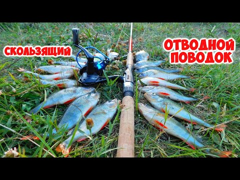 Монтаж скользящий ОТВОДНОЙ ПОВОДОК для ловли окуня и судака