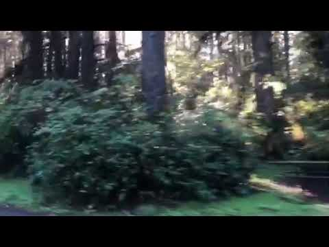 Video Of Fort Stevens State Park, OR