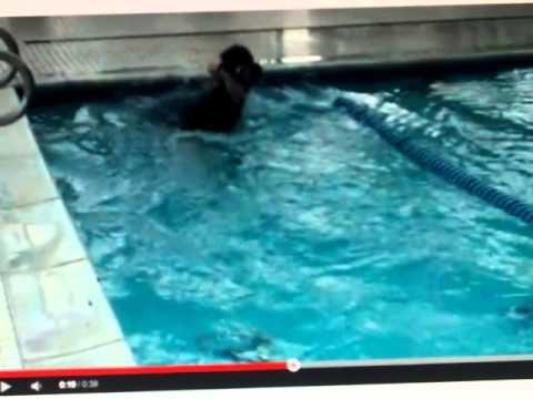 Evan's 50m freestyle