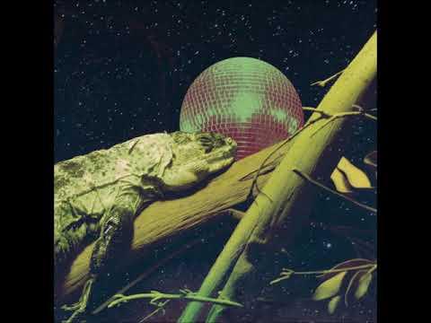 Iguana Garcia