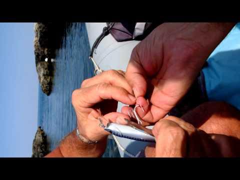 Videocamere per pesca invernale ed estiva