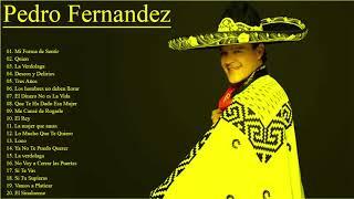 Pedro Fernandez Sus Grandes Exitos || Top 20 Mejores Canciones De Pedro Fernandez