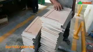 DÂY CHUYỀN CÁN UV 1300mm Woodmaster ( Máy Sơn UV 1m3)