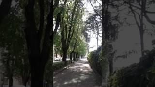 Vignola. Last summer - Video Youtube