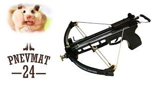 Арбалет-пистолет Interloper Аспид (гроза хомячков)