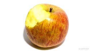 Apple Timelapse Video - Video Youtube