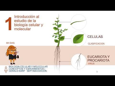 Download biología celular y molecular capitulo 1 Mp4 HD Video and MP3