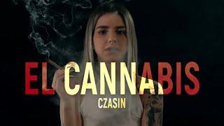 Kadr z teledysku El Cannabis tekst piosenki Czasin