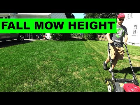 Changing Fall Lawn Mowing Height