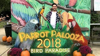 Parrot Palooza 2018 Featuring Parrot Wizard